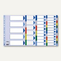 Artikelbild: Kunststoff Blanco Register DIN A4