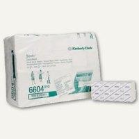Artikelbild: Papierhandtuch-Großpackung