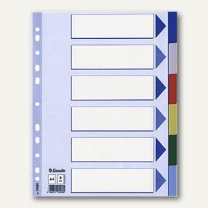 Kunststoff-Blanco-Register DIN A4