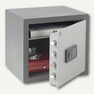 Secure Safe Professional PS2