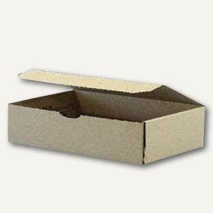 Klappdeckelbox 230x120x40mm