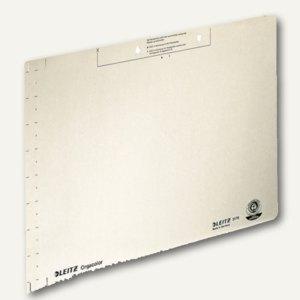 LEITZ Einlegeblatt, 323 x 224 mm, 260 g/m², chamois, 100 Stück, 2178-00-11