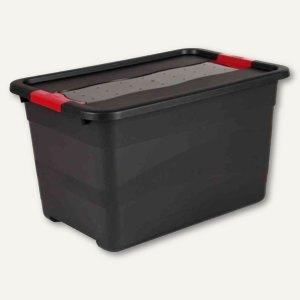 Aufbewahrungsbox eckhart - 52 Liter