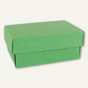 Geschenkschachteln A5, Karton, 26.6 x 17.2 x 7.8 cm, 350 g/m˛, grün, 12er-Pack