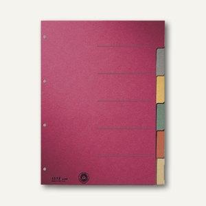 A4 farbig Leitz 4359-00-00 10 Blatt blanko Register-Karton